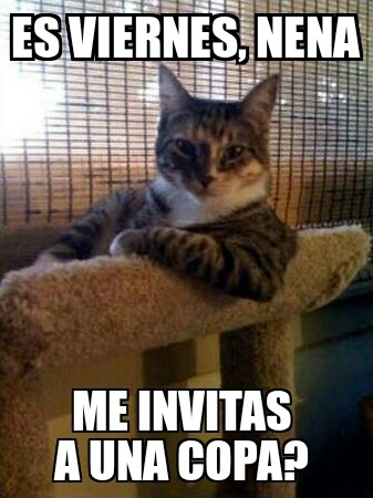Tooms de chat gratis para adultos