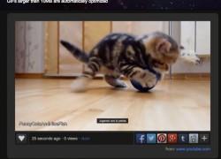 Crea GIFs animados fácilmente con Video to GIF