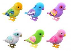 Pi-chan: el pájaro de juguete que te imita