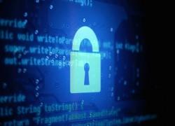 Evita el riesgo de descargar virus o malware de Internet