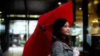 Cypress: el paraguas del siglo XXI hecho para durar