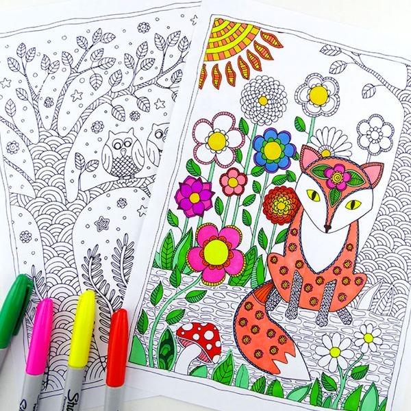 descargar libros para colorear adultos pdf