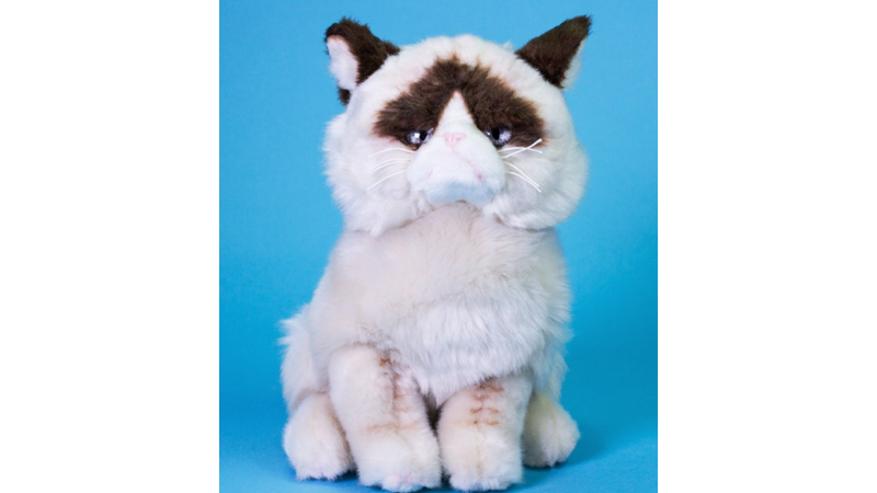 Ya puedes comprar el peluche del gato gruñón de Internet