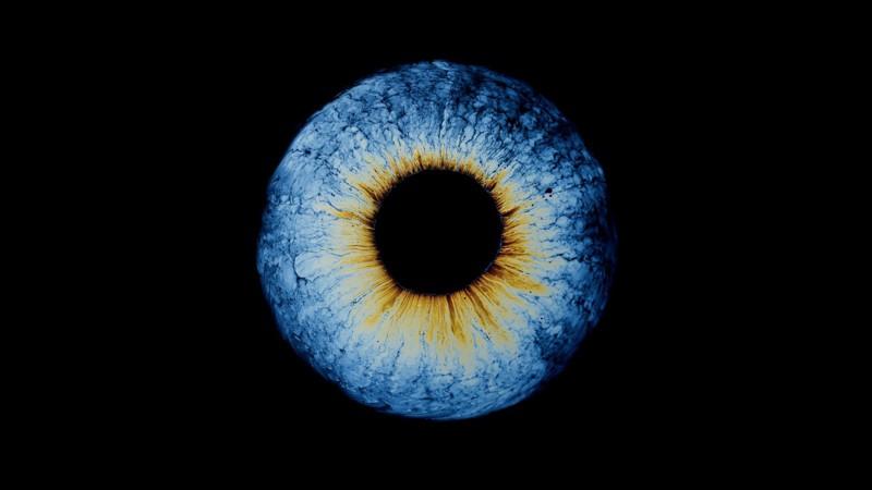 Fotos abstractas que parecen ojos (pero no lo son)