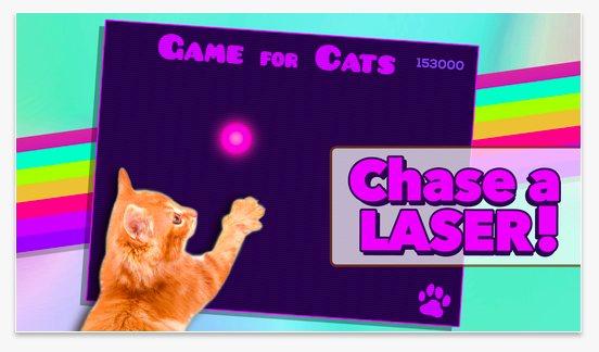 5 apps de tablet para tu gato