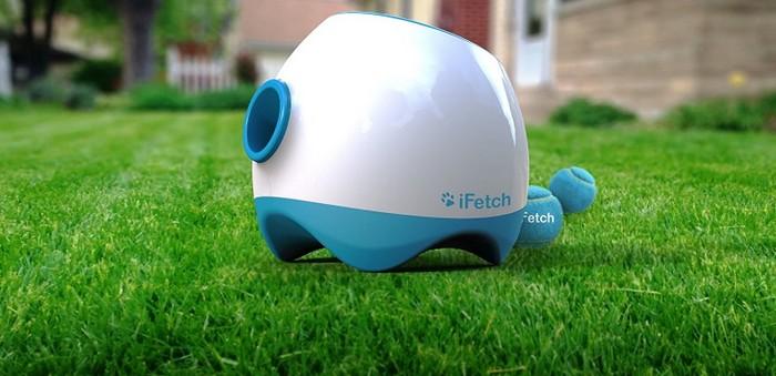Ifetch Too: lanzador automático de pelotas para perros