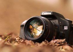 Sácale todo el partido a tu nueva cámara con estos cursos de fotografía