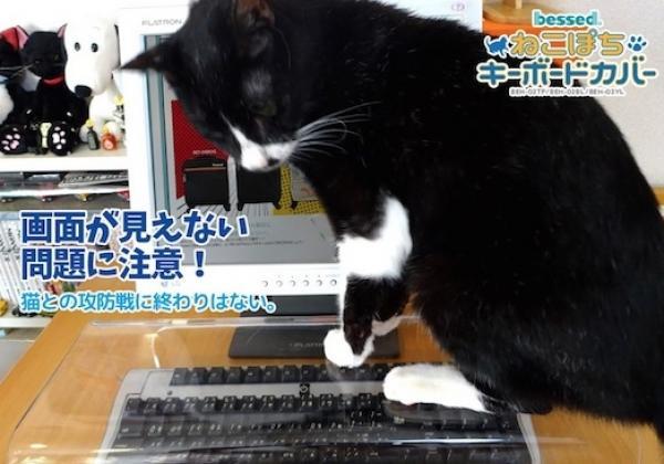 Con Neko Pochi podrás tener a tu gato encima del teclado y seguir trabajando