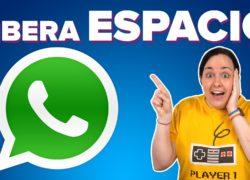Así es la nueva función de WhatsApp para liberar espacio