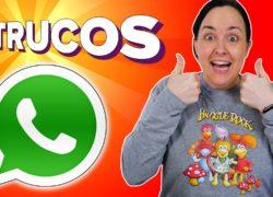 5 ajustes básicos de WhatsApp que debes conocer